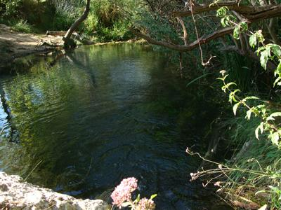 7 Toll del riu Font de la Coveta