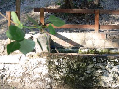 Font del Moli l'Ombria 04
